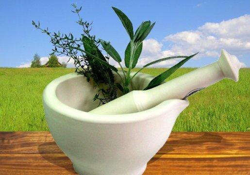 travi-meopatiya Азбука фитотерапии - свойства лечебных трав