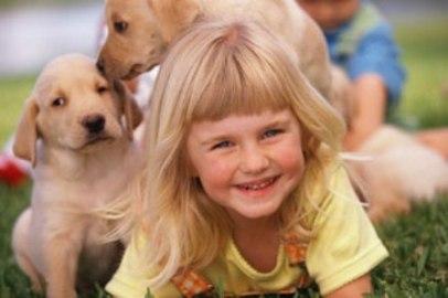 zoo Лекари животного мира и влияние животных на здоровье человека