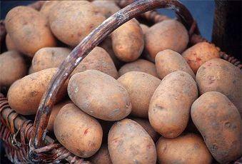 10 Правильный ход за картофелем для здорового урожая