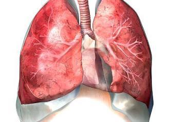 1290351710_0 Рецепт для лечения заболеваний верхних дыхательных путей