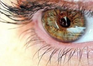 avatar-85864-20120217114116-300x215 Что-то попало в глаз: навигатор по болезням глаз