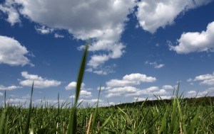 1344129-300x189 Природный воздух и его влияние на здоровье человека.