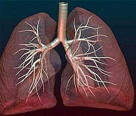 lechenie-pnevmoskleroza Симптомы прикорневой пневмонии