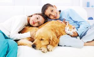 4-300x183 Как правильно выбрать домашнее животное для ребенка?