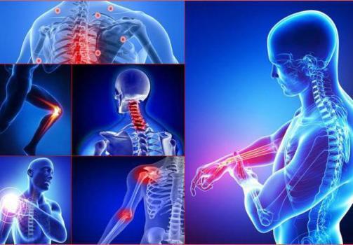 сустав7-1 Spinet.ru - самая актуальная информация по лечению опорно-двигательного аппарата