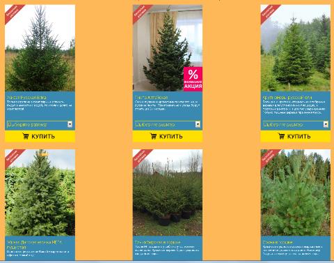 444 Где купить качественную елку в СПБ на Новый Год